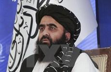 Phái đoàn Taliban đến Thổ Nhĩ Kỳ thảo luận về tình hình Afghanistan
