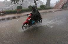 Gia Lai: Tập trung khắc phục thiệt hại do bão số 8 gây ra