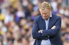 Barcelona chính thức sa thải huấn luyện viên Ronald Koeman