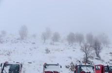 Người dân Trung Đông khổ sở vì tuyết bất ngờ rơi