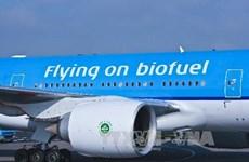 EU lại bất đồng về hạn mức sử dụng nhiên liệu sinh học