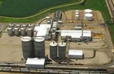 EU bị kiện vì đóng cửa thị trường dầu diesel sinh học