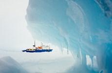 Tàu ba nước không cứu được tàu Nga mắc kẹt ở Nam Cực