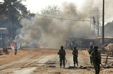 Pháp thúc đẩy giải quyết khủng hoảng tại CH Trung Phi