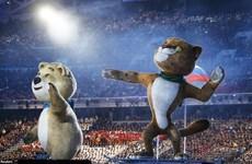 Chú linh vật vất vả nhất Sochi
