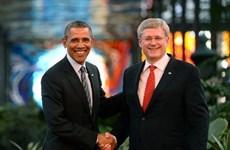 """Obama mất """"độ bia"""" vì Mỹ thua Canada ở môn hockey"""