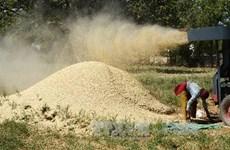 Venezuela nỗ lực đảm bảo chất lượng lương thực
