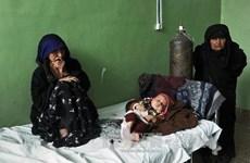 Cảnh báo về nạn trẻ em nhiễm lao không được phát hiện