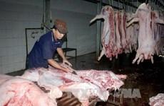 Lò mổ đóng cửa, thịt lợn ở Đà Lạt trở nên khan hiếm