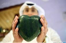 Dưa hấu trái tim cập bến Trung Đông, gần 10 triệu đồng mỗi quả