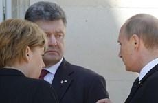 Ông Putin và tổng thống đắc cử Ukraine thảo luận lệnh ngừng bắn