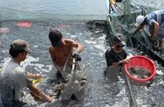 Nâng cao nhận thức cho ngư dân về bảo vệ nguồn lợi thủy sản