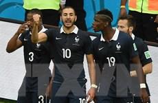 """Pháp-Nigeria: """"Gà trống"""" cất tiếng gáy trước """"đại bàng non""""?"""