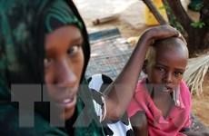 Cuộc khủng hoảng lương thực ở Nam Sudan đang rất nghiêm trọng