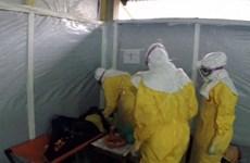 Cố y tá Nigeria có thể nhiễm Ebola từ nước tiểu của bệnh nhân