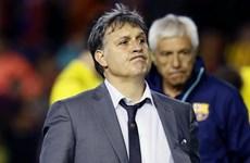 Cựu HLV Barca làm thuyền trưởng Argentina, Conte dẫn dắt Italy
