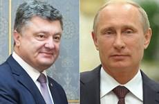 Tổng thống Nga, Ukraine nhất trí cần tiếp tục các cuộc đối thoại