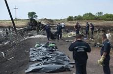 Xác định thêm danh tính 14 nạn nhân trong vụ rơi máy bay MH17
