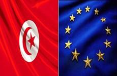 EU cử phái bộ tới Tunisia quan sát bầu cử quốc hội và tổng thống