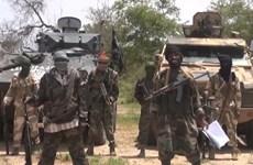Phiến quân Boko Haram tấn công bằng rocket từ Nigeria sang Cameroon