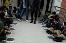Trung Quốc: Sinh viên ăn vặt bị phạt cắn 50kg hạt hướng dương