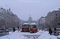 Séc: Hệ thống đường sắt và tàu điện bị tê liệt do băng tuyết