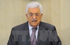 Liên đoàn Arab triệu tập họp khẩn thảo luận tình hình Palestine