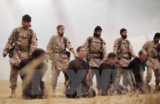 Thêm nhiều người bị tổ chức IS hành quyết ở Libya và Iraq