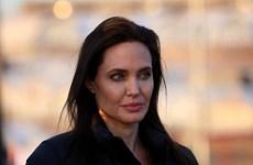 Angelina Jolie đã phẫu thuật cắt buồng trứng vì lo sợ ung thư