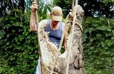 """Thợ săn cá sấu bắn hạ """"sát thủ đầm lầy"""" khổng lồ dài 4,9m"""