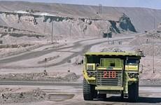 Chile: Mỏ đồng lớn trở lại hoạt động sau 1 tuần đóng cửa vì đình công