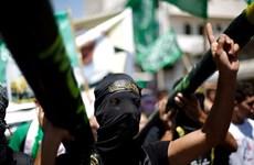 """Palestine đề nghị điều tra về vấn đề """"khủng bố định cư"""" Do Thái"""