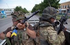 Quân đội Ukraine tham gia cuộc tập trận lớn nhất lịch sử NATO