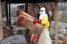 WHO dọa phạt các nước phớt lờ quy định sau đại dịch Ebola