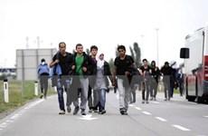 Cảnh sát Hungary bắt gần 400 người di cư xâm nhập trái phép