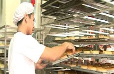 Cẩn trọng với chất lượng của các mẫu bánh Trung Thu thủ công