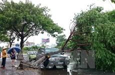 Đà Nẵng tập trung khắc phục hậu quả do cơn bão số 3 gây ra
