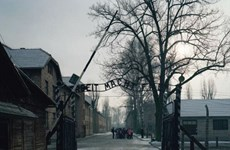 Nữ nhân viên của Hitler bị cáo buộc làm 260.000 người chết