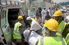 Quốc vương Saudi Arabia ra lệnh xem xét việc tổ chức hành hương