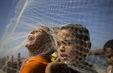 [Photo] Sự kiện thế giới tuần 21-27/9 qua những bức ảnh ấn tượng