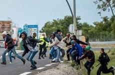 Pháp điều hàng trăm cảnh sát để ngăn người di cư vượt đường ngầm