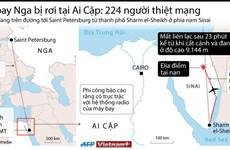 [Infographics] Vụ máy bay Nga rơi ở Ai Cập làm 224 người chết