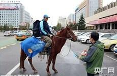 Công ty thương mại điện tử Trung Quốc dùng ngựa để đi giao hàng