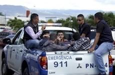 Cảnh sát Honduras bắt giữ 5 công dân Syria mang hộ chiếu giả