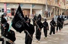 IS đồng loạt tấn công và chiếm giữ một số khu vực tại Iraq