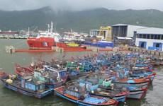 80 khách mắc kẹt trên huyện đảo Lý Sơn do ảnh hưởng bão Melor