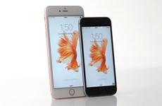 """Cổ phiếu của Apple rớt giá khi iPhone 6S, 6S Plus hết """"hot"""""""