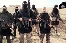 Thủ lĩnh Hồi giáo dòng Shi'ite tiết lộ nguồn ngân sách, vũ khí cho IS