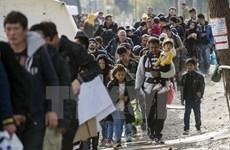 EU và Séc đề cao đoàn kết nội khối trong vấn đề người tị nạn