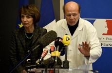 Pháp điều tra sự cố do thử nghiệm thuốc giảm đau mới gây ra